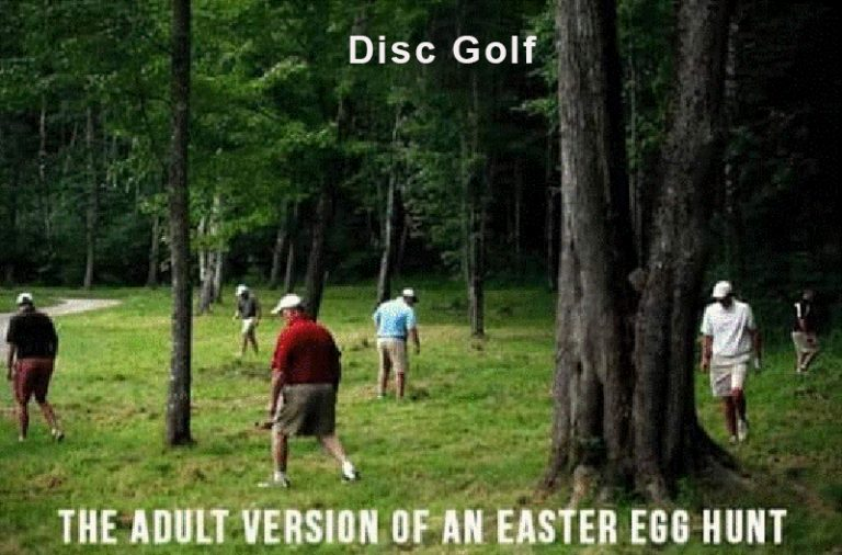 hunting for disc